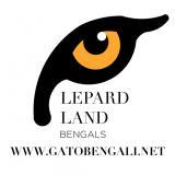 Avatar de Lepardland