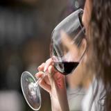 Avatar de vinosychampagne
